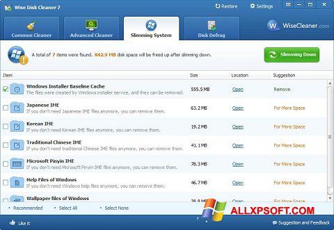 Képernyőkép Wise Disk Cleaner Windows XP
