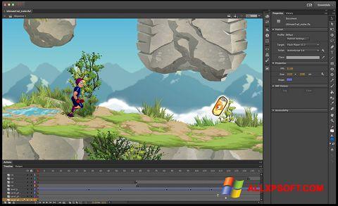 Képernyőkép Adobe Flash Professional Windows XP