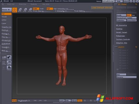 Képernyőkép ZBrush Windows XP